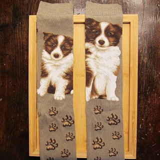 JHJ Design Canadian brand of high saturation knitting socks series Border Collie dog (female) puppy dog ​​cute