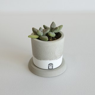 One well two-color cement hand potted + round base (primary / dark) without plant suitable for meat plants / cactus planting