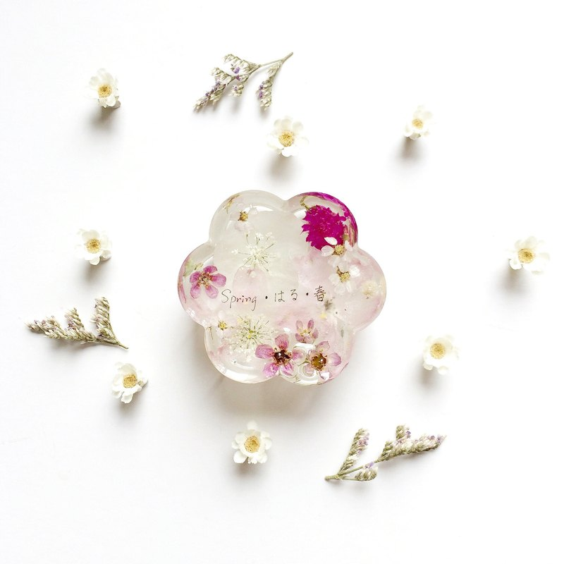 Dried flowers Decoration / Paper weight / design of Spring