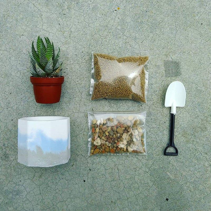 泥盆種植體驗材料包