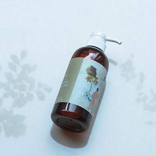 ◊ ◊ ◊ ◊ Net true feelings hair / Shampoo (500ml)