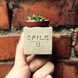 smile :) smile ㄧ a ~! magnets potted succulents