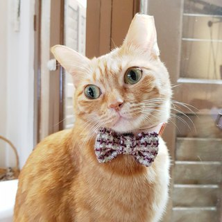 Demi Tweed Bowtie for Pets