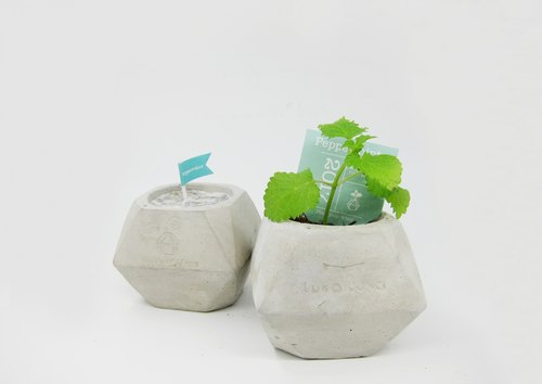 Up freight - Soy Candles add concrete pot shape - Peppermint Peppermint