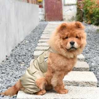 Classic khaki pet student uniform - boys trousers [ZAZAZOO]