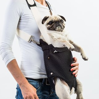Dog front carrier FLOYD