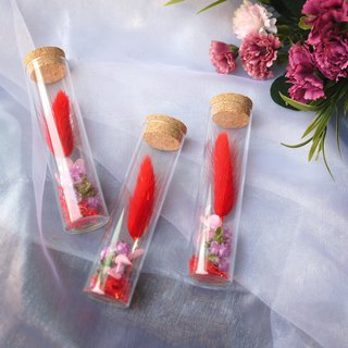 Healing Time - Red Rabbittail Glass Test Tube Dried Flowers / Single Sold