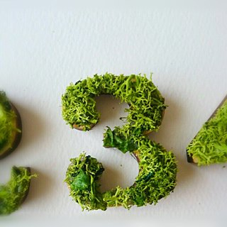 "Wooden numbers objects (Moss) 5cm ""3"" × 1 point"