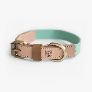 Natural Leather Mint Green Collar (M) | For Dogs