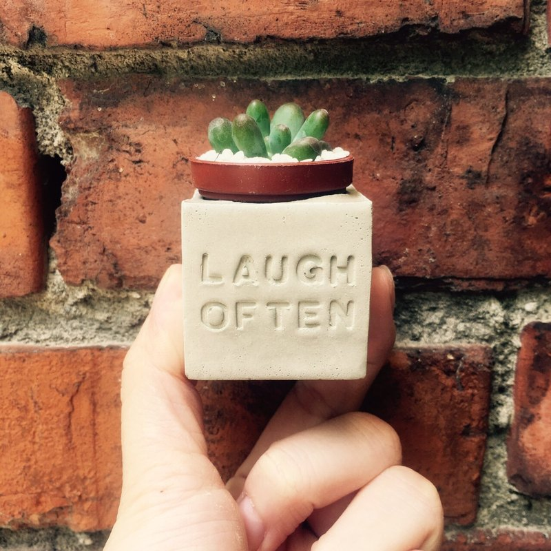 Laugh Often (happy laugh every day) magnet potted succulents