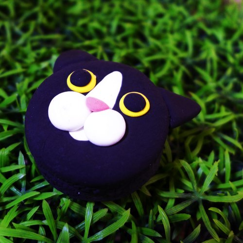 【Saturnal Ring】 Petite Planet: Tuxedo Cat | Light Earth Creation. Water repellent. Can change necklace / magnet / pin