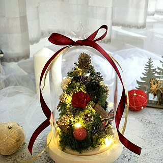 l bottle of Christmas tree l*Christmas*Christmas*Merry Christmas*decoration*non-withered flowers*star flower*immortal flower*exchange gifts *