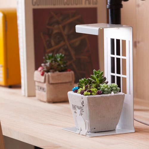 Mini Garden Mini Grow Light/Kitten