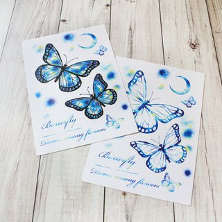 postcard butterfly Star Cham