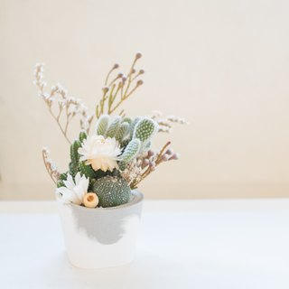 Third Floor【 Tree of Life】 Cactus & Cement Basin | DIY & Dry Flowers