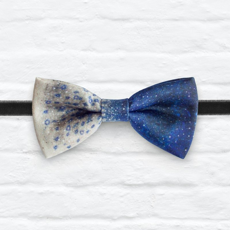 Style 0193 Bowtie - Modern Boys Bowtie, Toddler Bowtie Toddler Bow tie, Groomsmen bow tie, Pre Tied and Adjustable Novioshk