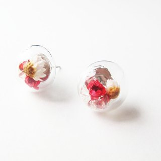 Rosy Garden Dried Daisies with crystals inside earrings