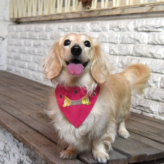 Handmade Pet Harness/Collar Accessory - Embroidered Bib - Yuanbao 【ZAZAZOO】