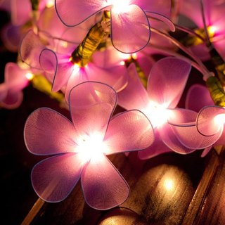 20 Purple Flower String Lights for Home Decoration Party Wedding Bedroom Patio and Decoration
