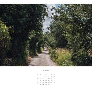 2019 Poster Calendar / a3 / Botanical Healing (single)