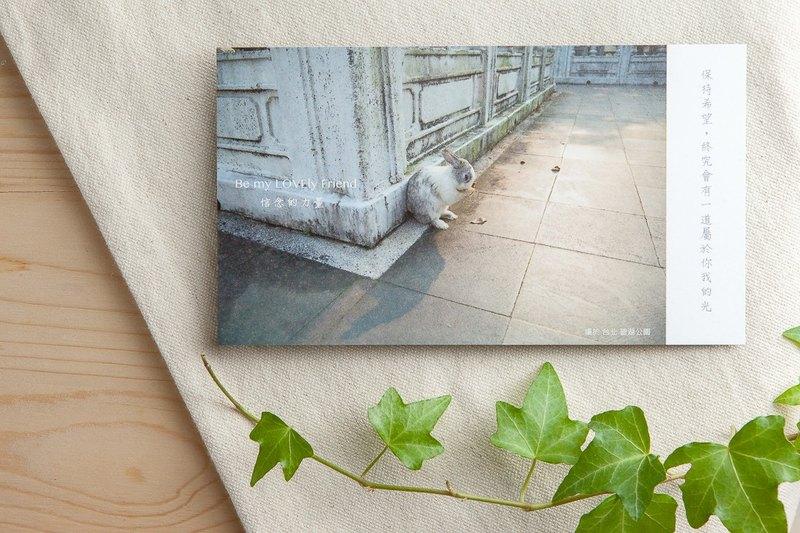 兔子攝影插畫明信片 - 信念的力量