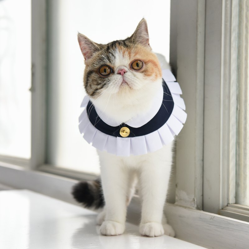 Pet Costume - Elizabethan Ruffs / Neck Ruff - Wales Dark Blue