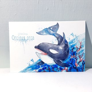 Sea and the sea first season killer whale / double postcard postcard