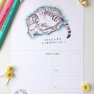 Animal illustrated postcards [Sleeping tabby]