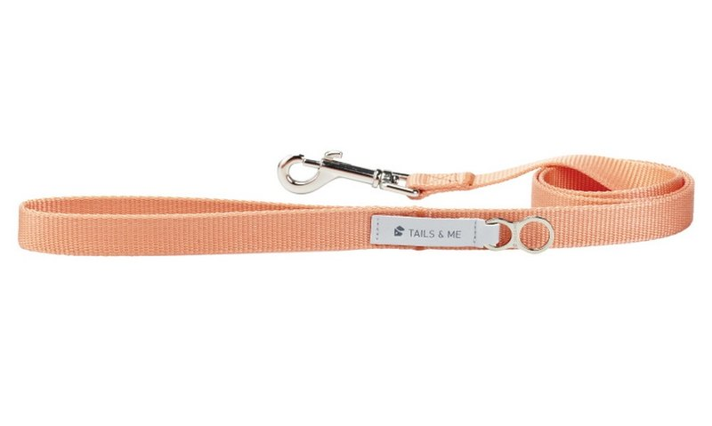 [Tail and me] classic nylon belt leash pink orange L