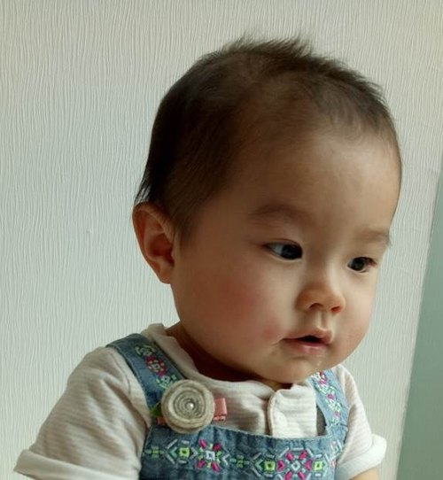 [Gray temperament Wenqing chick] blankets hairpin pin hair baby girl child
