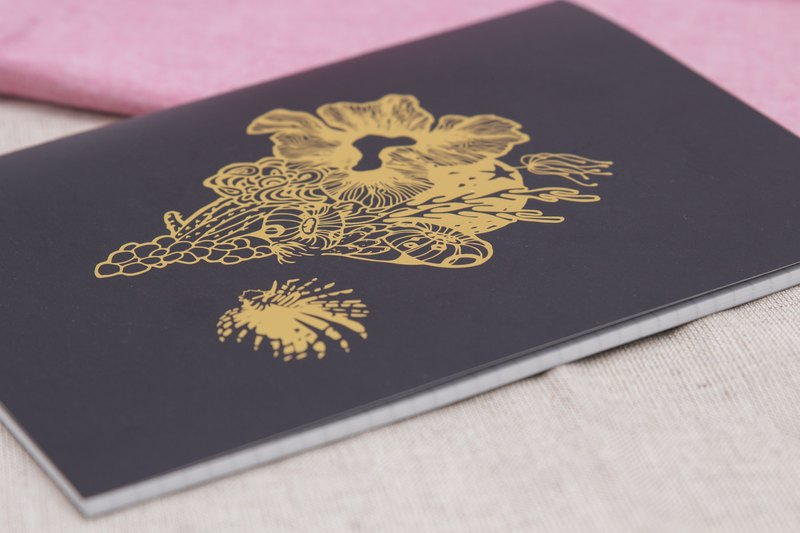 Lionfish notebook