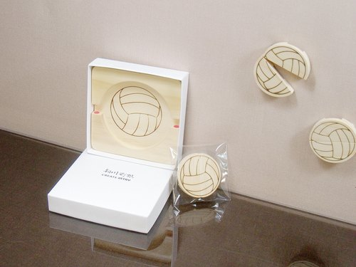 Volleyball coasters