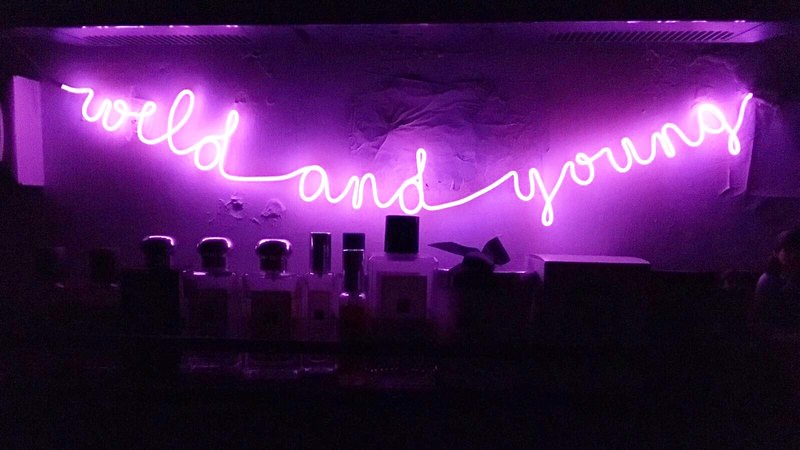 neonlite custom made wording light  /wild and young/