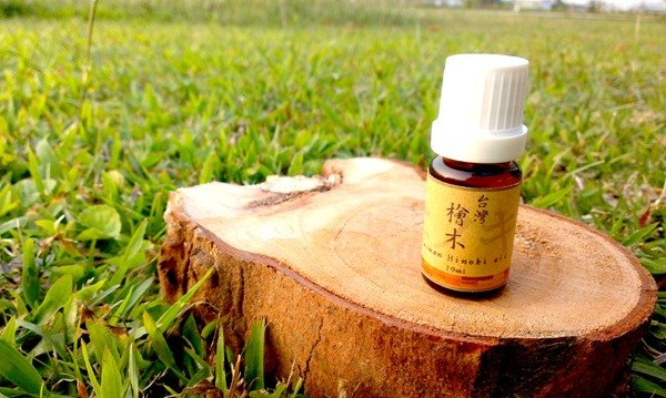 Pure Natural Beech Essential Oil 10ml