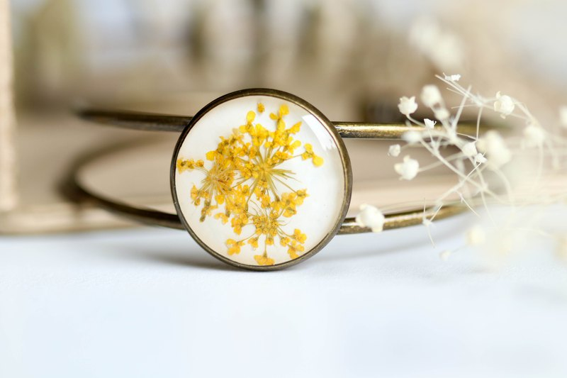 Ammi majus (Yellow, BG-White) – Bangle