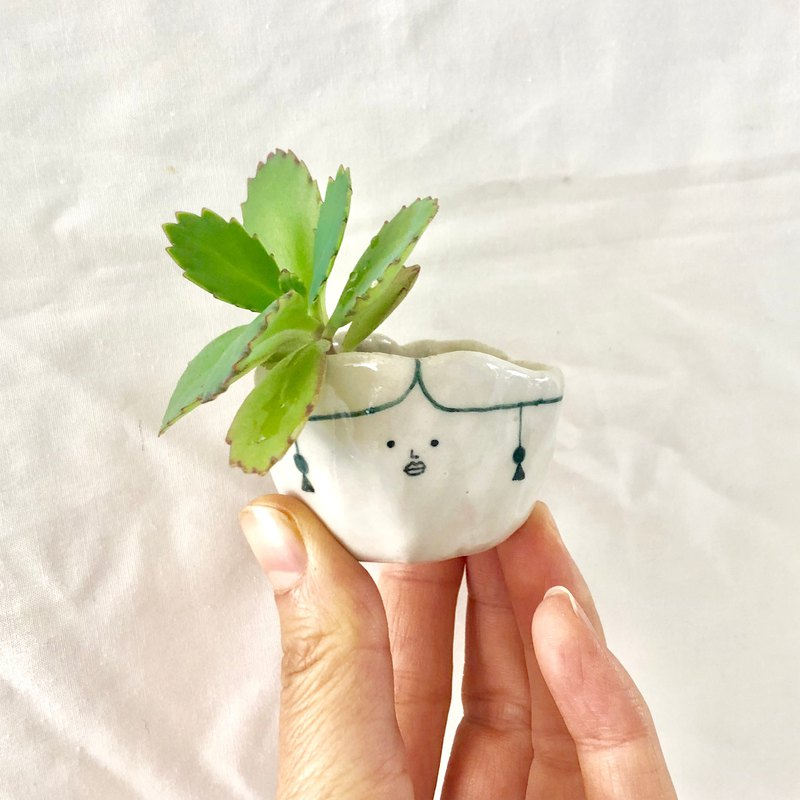 Small potted plant with earrings - desk Small potted plant healing miniature plant