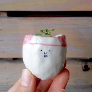 Cute headband small flower - desk small potted healing more small meaty container