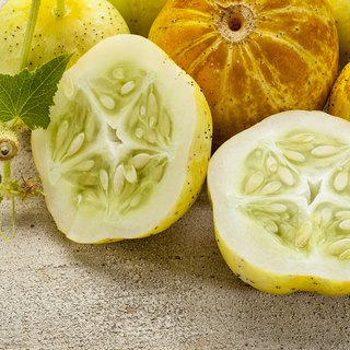 Lemon Cucumber/Cultivation Combination