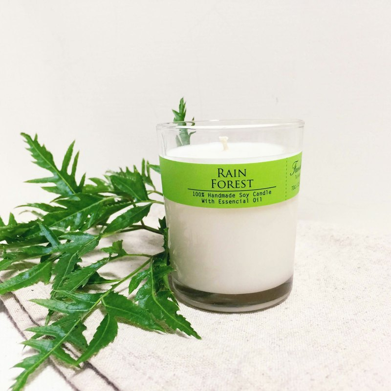 After Rain Jungle Essential Oil Soy Candle (Small) Fresh Herbal Removes Musty Moisture