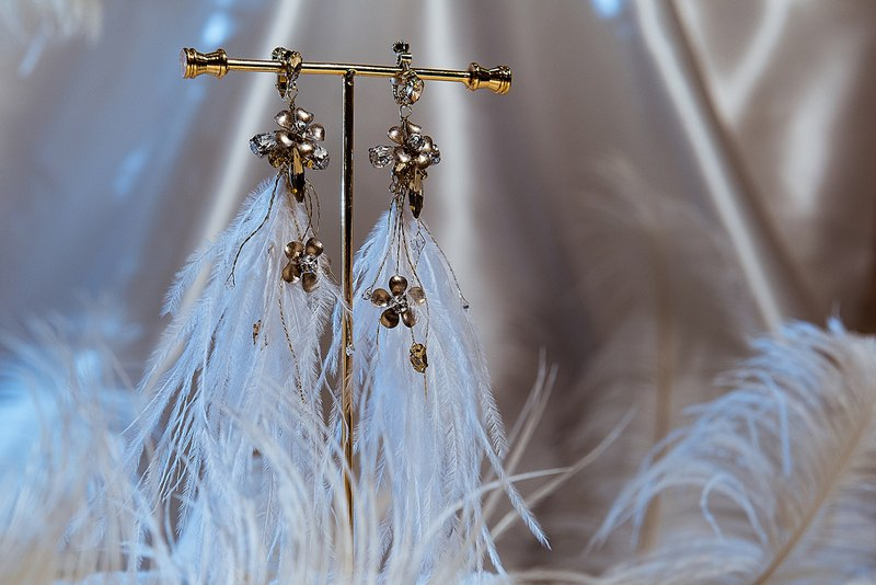 Flashy World-Swarovski Crystal Feather Earrings