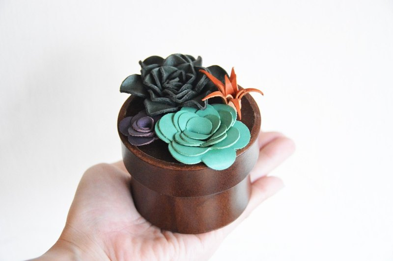 Fading Mist Leather Succulents Box