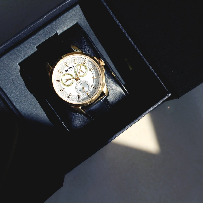【PICONO】Eunice Gold with White carbon dial watch / ST-2406