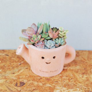 Peas succulents and small groceries - crazy grocery series - cute watering cans