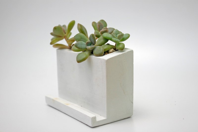 Cement pot succulents - business card holder