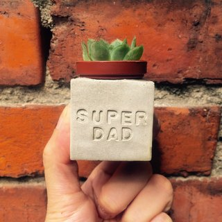 Father's Day gift. Super Dad Superman Dad. Meaty magnet potted plants