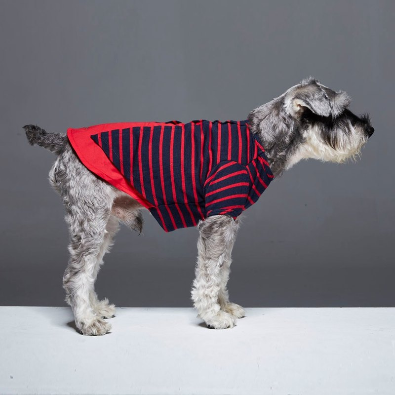 Rear slit shape round neck long sleeve striped pet clothes
