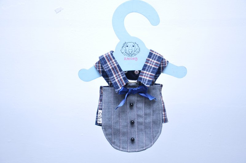 Stylish gentleman suit. Among the chest back. Pet hand clothes