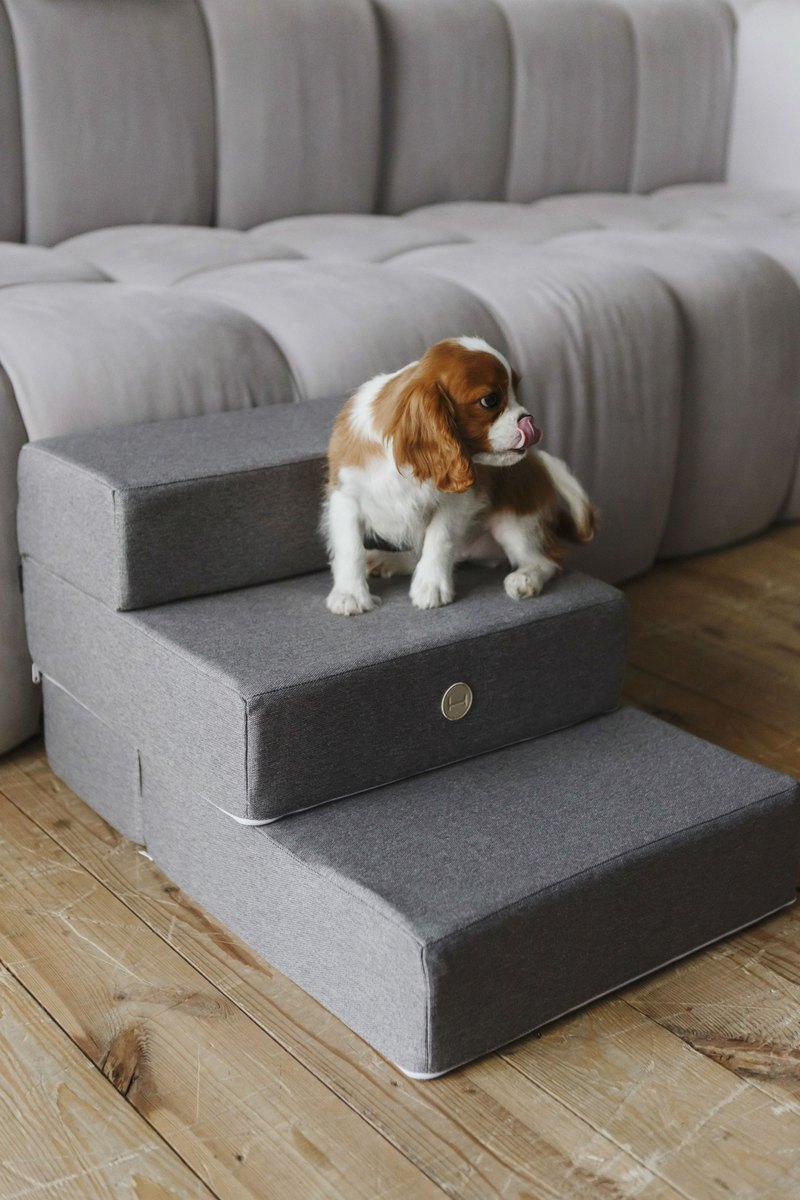 Dog Steps, canvas steps for pet, bed stairs, dog furniture - Grey