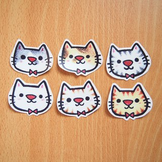 Waterproof Sticker Pack - Cat Sticker (6 in)