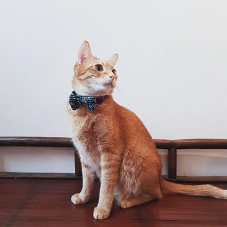 George Tweed Bowtie for Pets